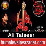 http://www.humaliwalayazadar.com/2012/11/ali-tafseer-nohay-2008-2013.html