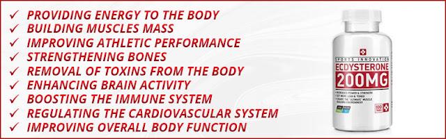 ecdysterone-natural-bodybuilding-diet