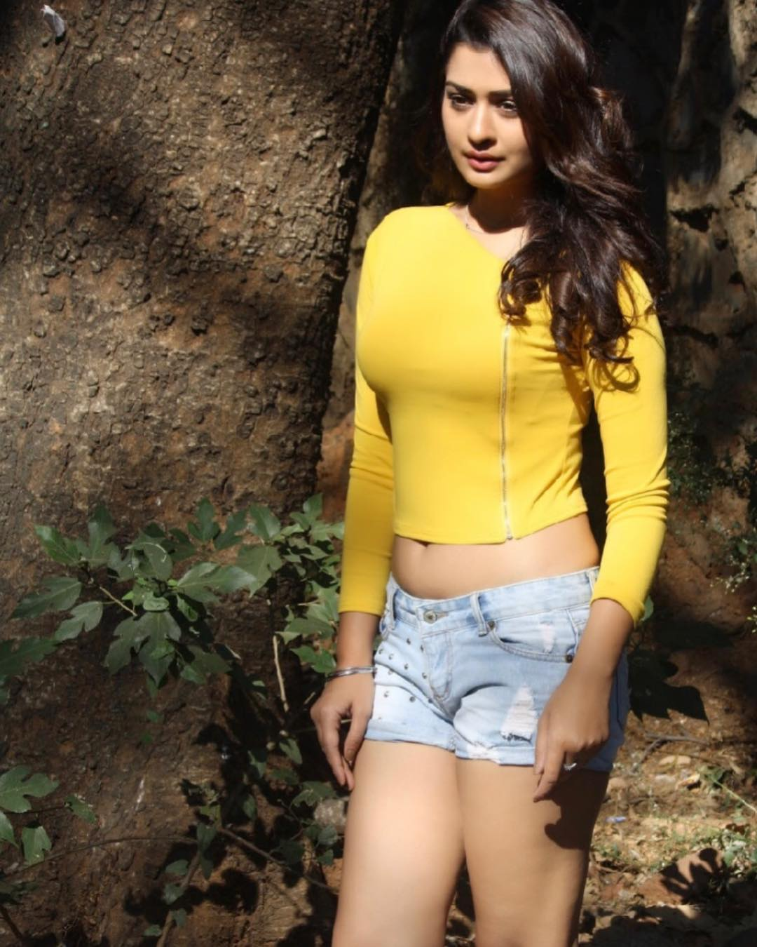 Rajput Payal RX100 Cleavage Hot Stills
