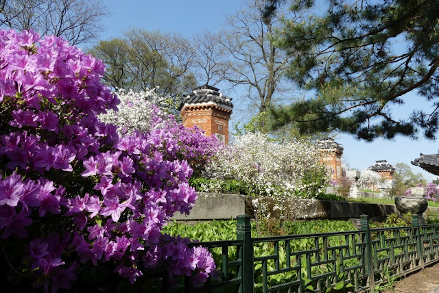 Seoul - Gyeongbokgung, Amisan-Garten hinter Gyotaejeon