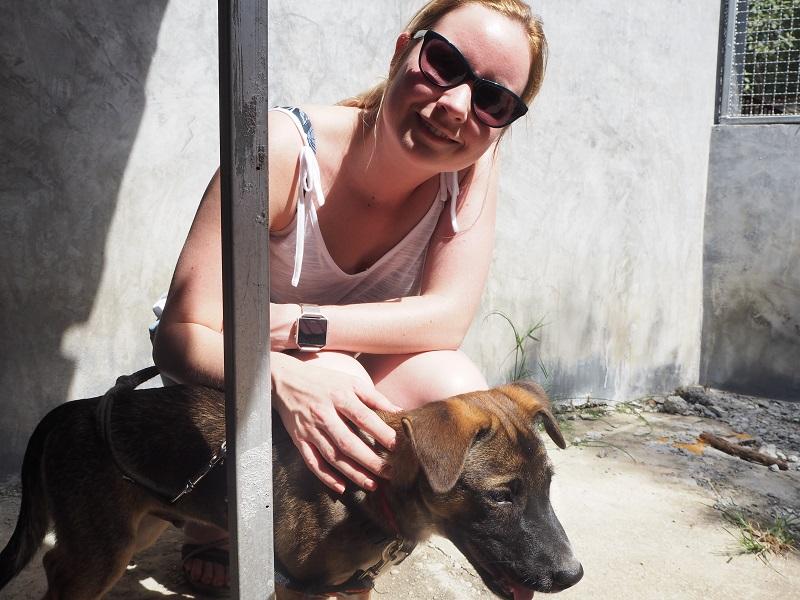 Dog Walking at Lanta Animal Welfare