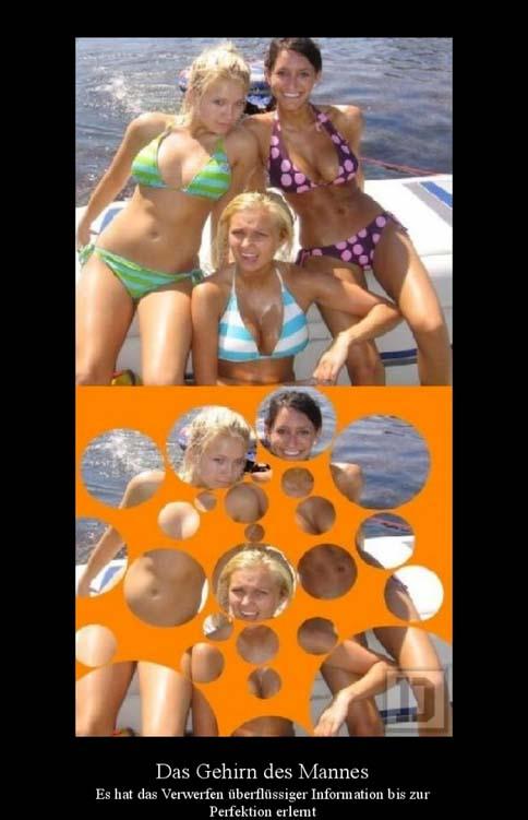 witzige Bilder mit Frauen im Bikini
