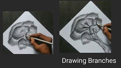 How to draw tree step by step tutorial ,for to draw tree ,pencil drawing drawing for beginners, easy drawing tutorial for to tree, easy tutorial for to draw tree, drawing basic sketching , beginners tutorials