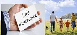 4 Jenis Asuransi Jiwa Untuk Karyawan Perlu Diketahui