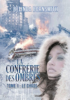 http://lesreinesdelanuit.blogspot.com/2017/06/la-confrerie-des-ombres-t1-chaos-de.html