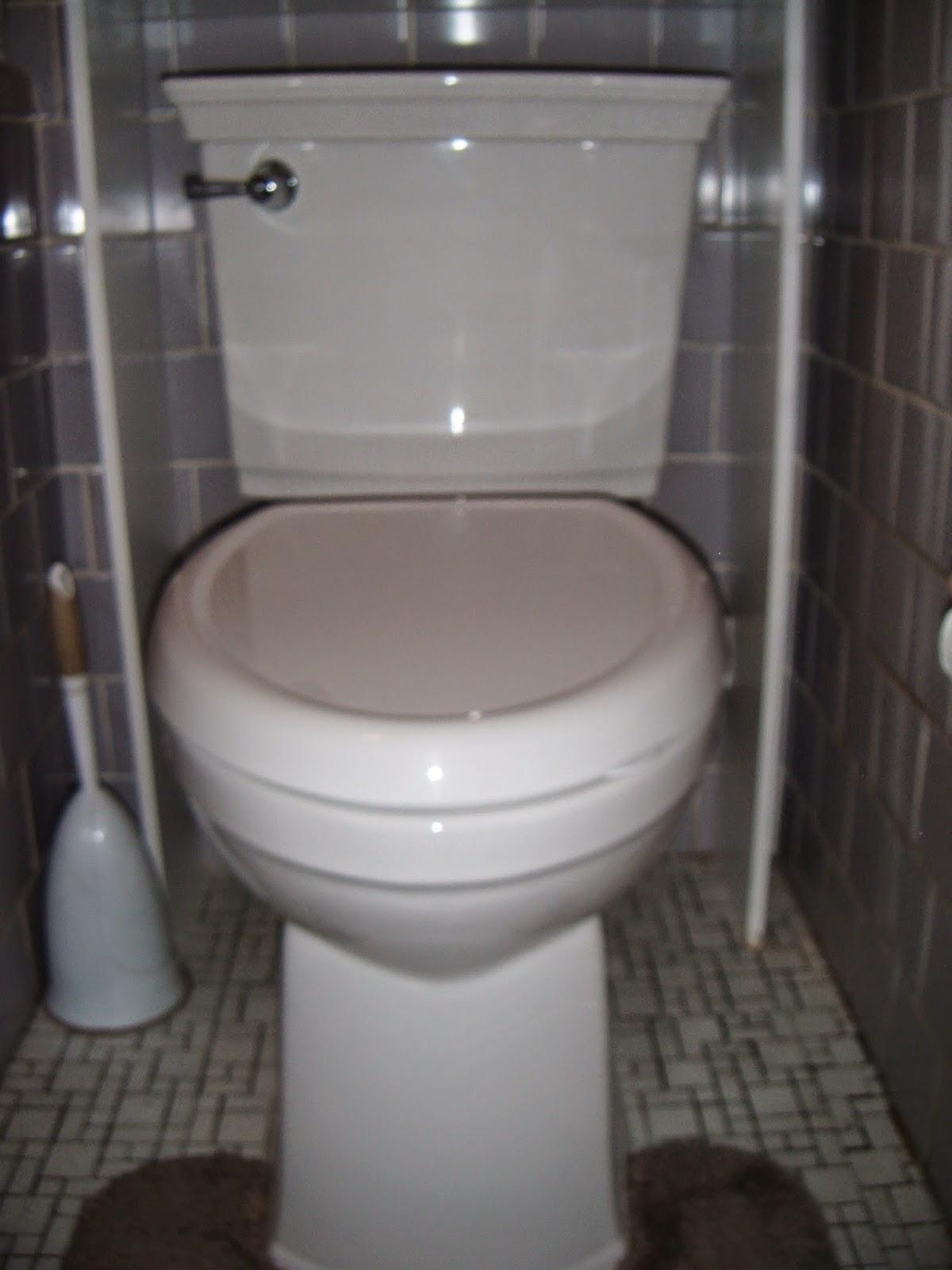 The Abcd Diaries American Standard Optum Vormax Toilet