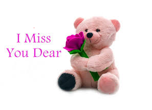 Beautiful Miss You Quotes For Girlfriend In Hindi English