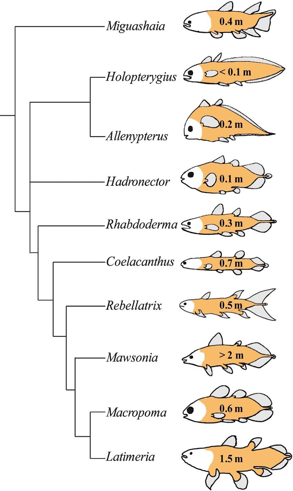 bio essays ap bio evolution essay questions munch et al bioessays  bio essays bio essays bio essays bioessays microbiome