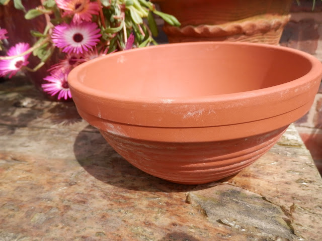 Charity Shopping, Terracotta Pot.  secondhandsusie.blogspot.co.uk