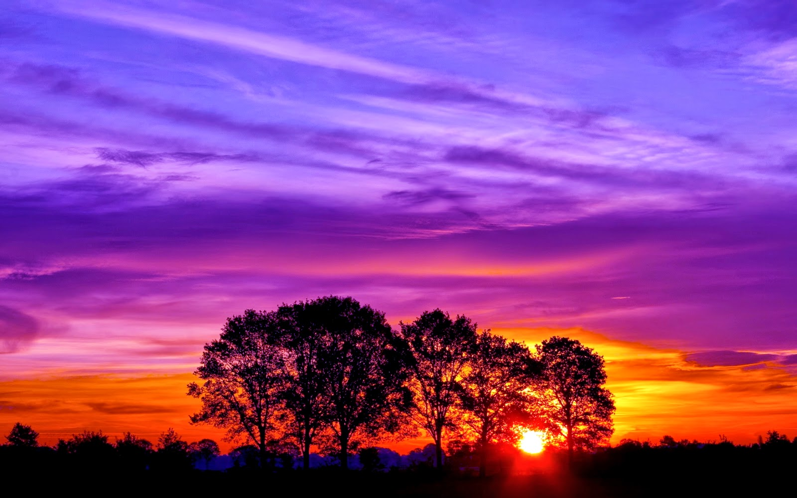 Labels: Beautiful Sunset Wallpapers downloads