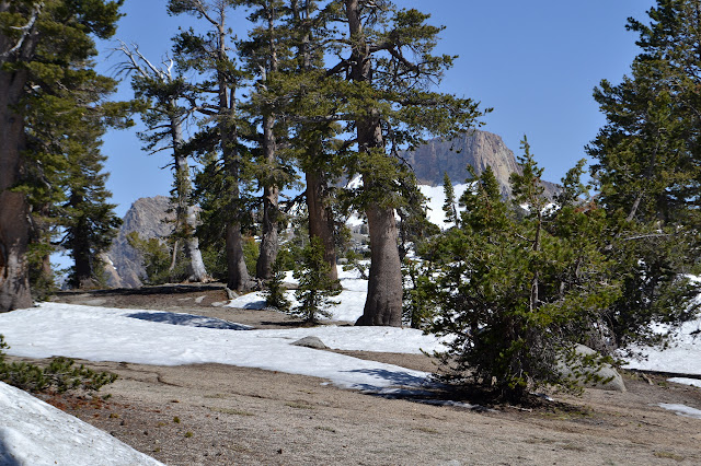 Mount Silliman
