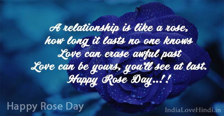 Rose Day Quotes Happy Rose Day 2019 Wishes Quotes For Love