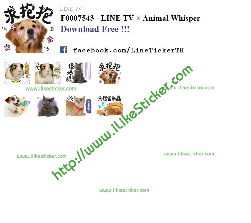 LINE TV × Animal Whisper