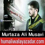 http://www.humaliwalayazadar.com/2016/11/syed-murtaza-ali-musavi-nohay-2017.html