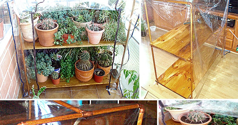 Planeta virtual invernadero casero con cobre y madera - Invernadero casero terraza ...