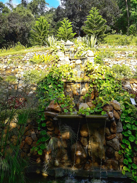 A mini-water falls to irrigate the garden