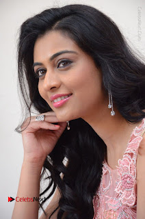 Actress Neha Hinge Stills in Pink Long Dress at Srivalli Teaser Launch  0111.JPG