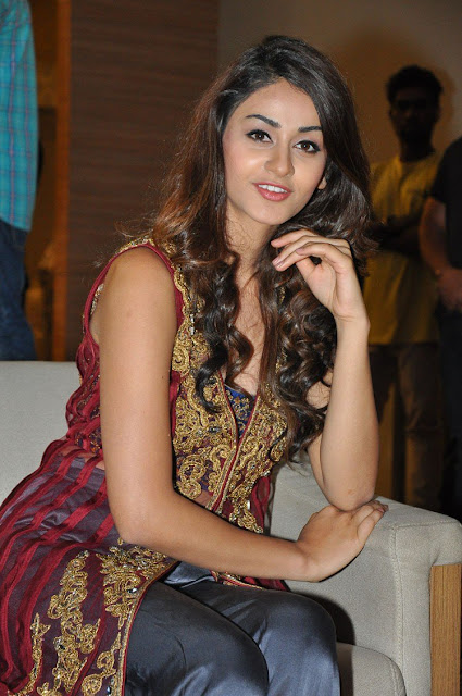 Actress Aditi Arya at ISM Telugu Movie Audio Launch Photos