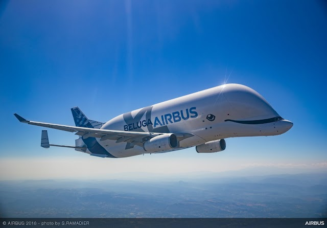 Airbus Beluga XL: a baleia voadora