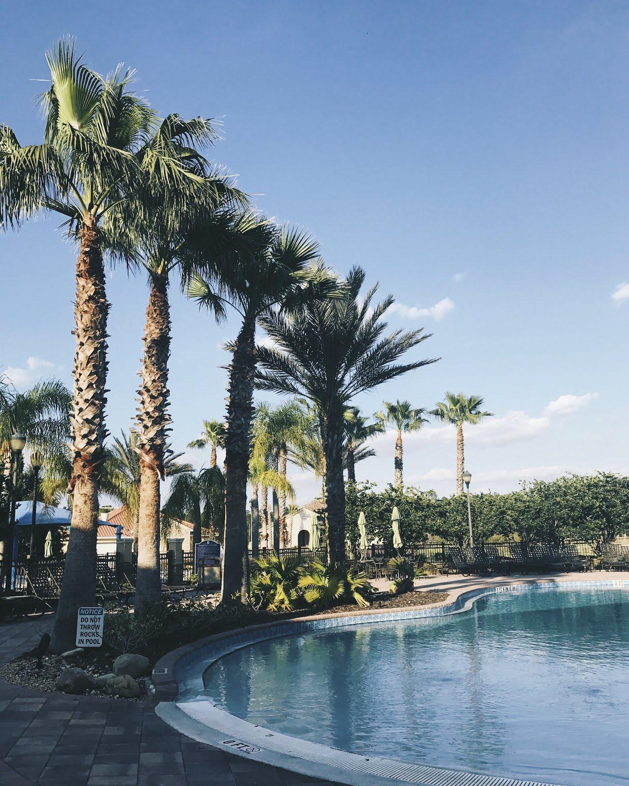 Happy-Saturday-Gorgeous-Weather-&-Floridian-Palm-Trees-Vivi-Brizuela-PinkOrchidMakeup