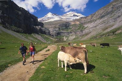 Senderismo Cordillera del Hindu Kush