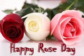 Best Rose day messages 2016