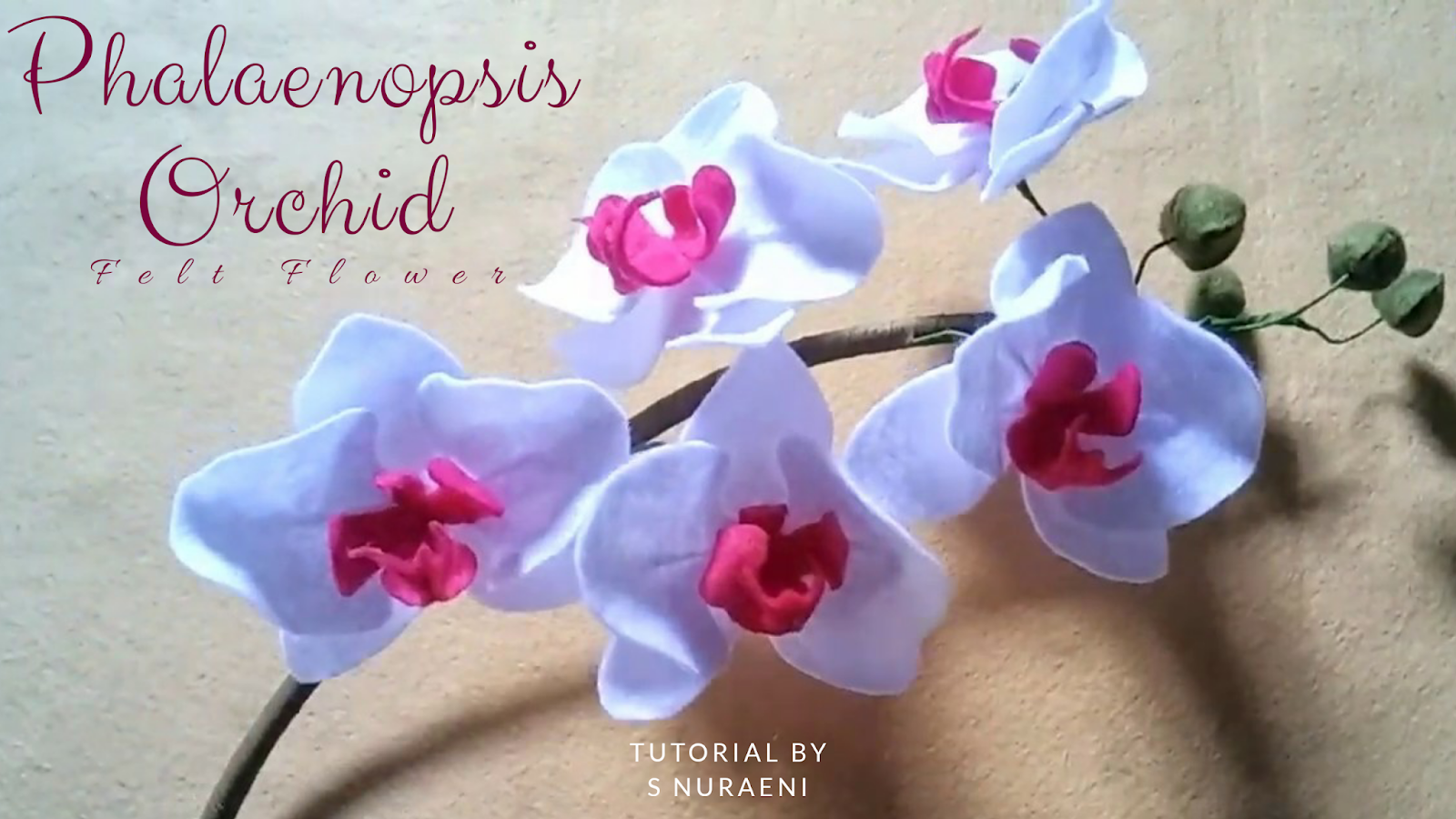 Inspirasi Tutorial Menarik Tutorial Cara Membuat Bunga Anggrek