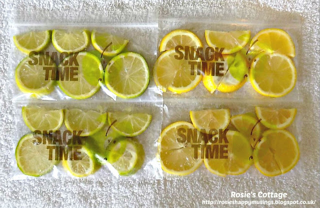 Sliced Lemon & Lime Ready To Freeze