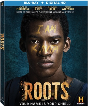 Roots Part 3 (2016) Dual Audio Hindi 720p BluRay 1GB