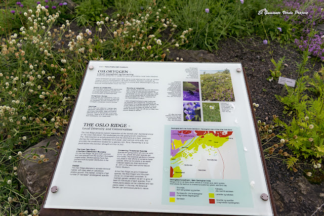 The Oslo Ridge - Jardin Botánico de Toyen, Oslo por El Guisante Verde Project