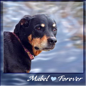 Our Friend, Mabel Lou
