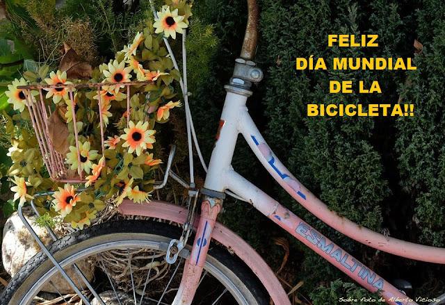 salamancaenbici dia mundial de la bicicleta