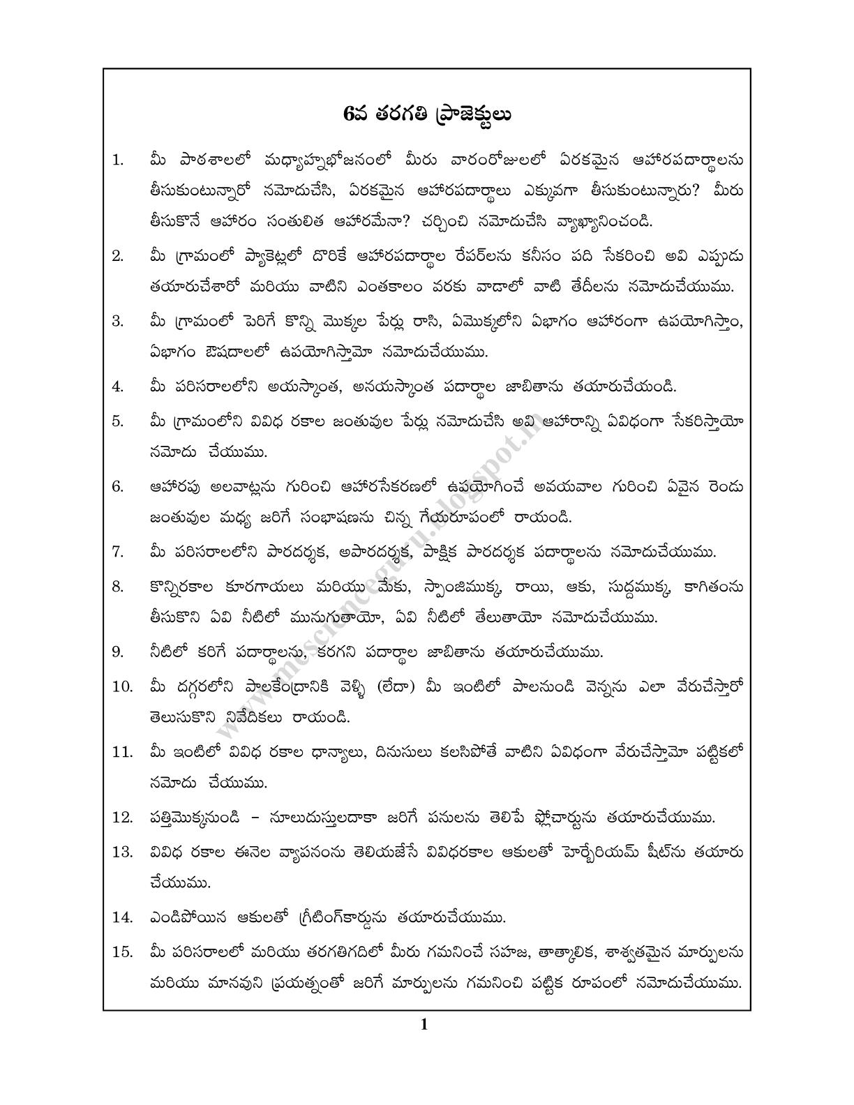 Biology Guru 6th Class Science Projects