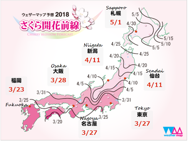 The Ultimate Sakura Cherry Blossom Forecast For Japan 2018