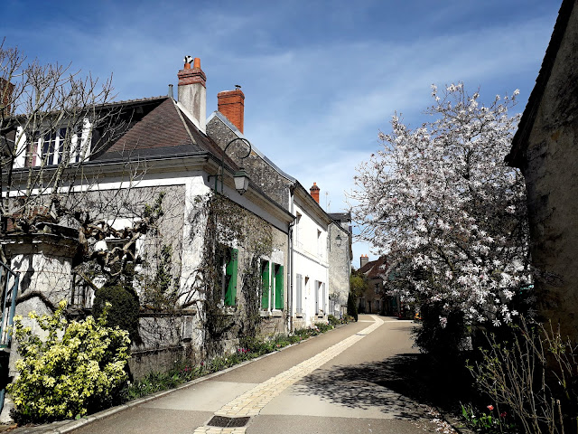 Spring blossom in the village of Chedigny