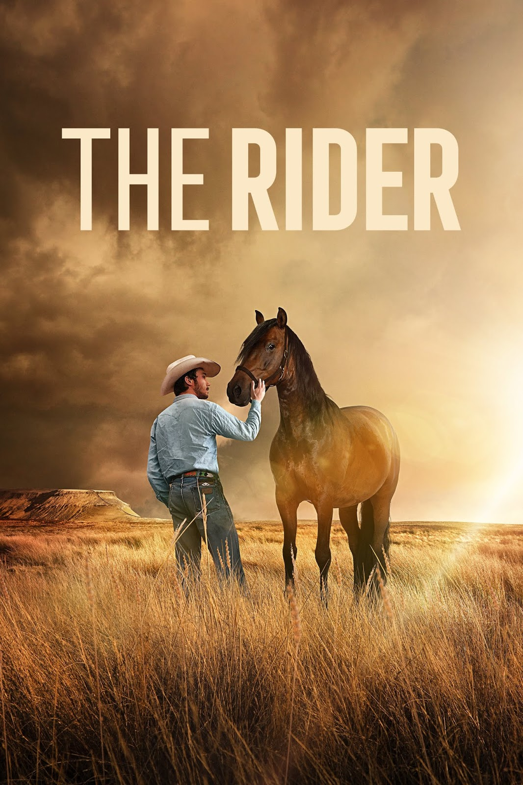 The Rider [2017] [DVDR] [NTSC] [Latino]