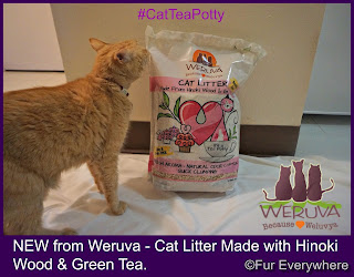 Carmine checks out a bag of Weruva Cat Litter Made with Hinoki Wood & Green Tea.
