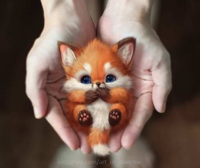 13-Little-fox-Yee-Chong-Digital-Art-www-designstack-co