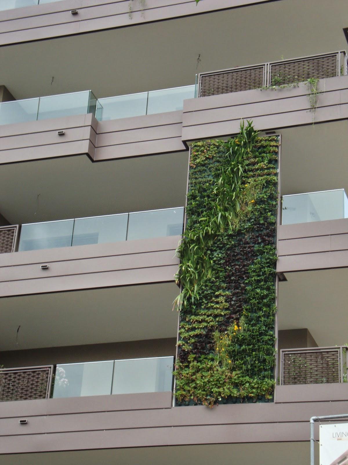 Un piccolo giardino in citt giardini verticali le - Pannelli per giardini verticali ...