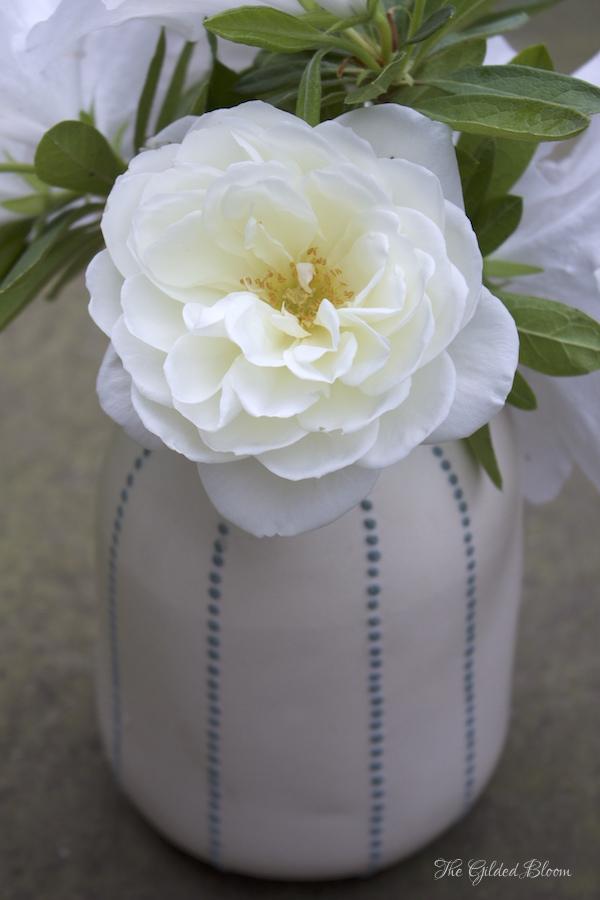 Iceberg Roses- Early Summer Roses- www.gildedbloom.com