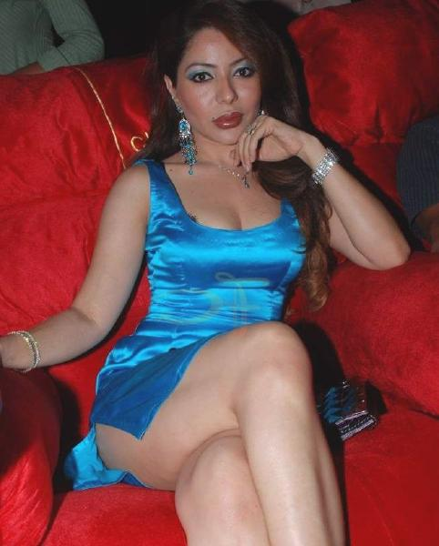 south india gallery laila khan spicy hot photos images stills