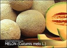 Tips cara memilih buah melon yang paling manis