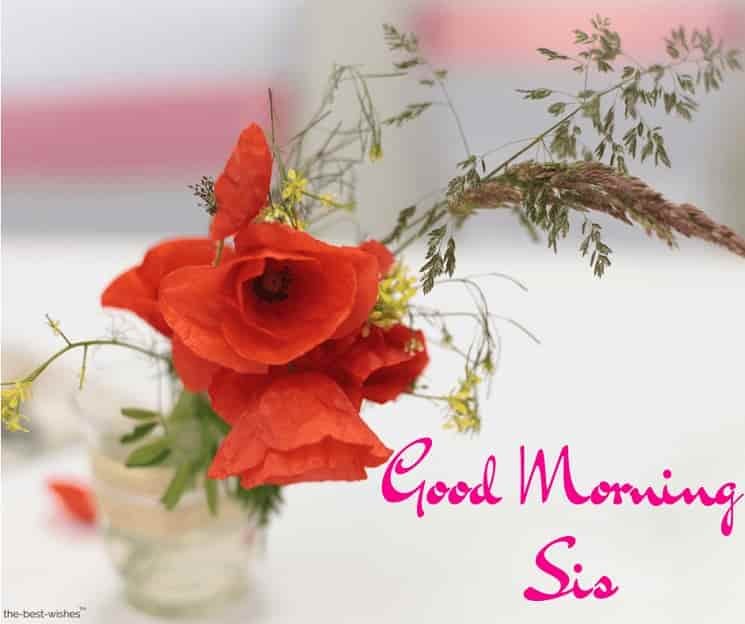 good morning sis picture