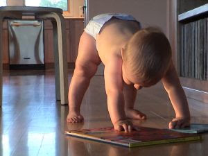 Image: Baby in the evening in a diaper, playing with a book. Photo credit: Ramona Gaukel (monigirl), on FreeImages