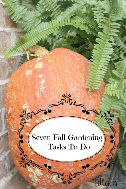 7 Fall Gardening Tasks To Do