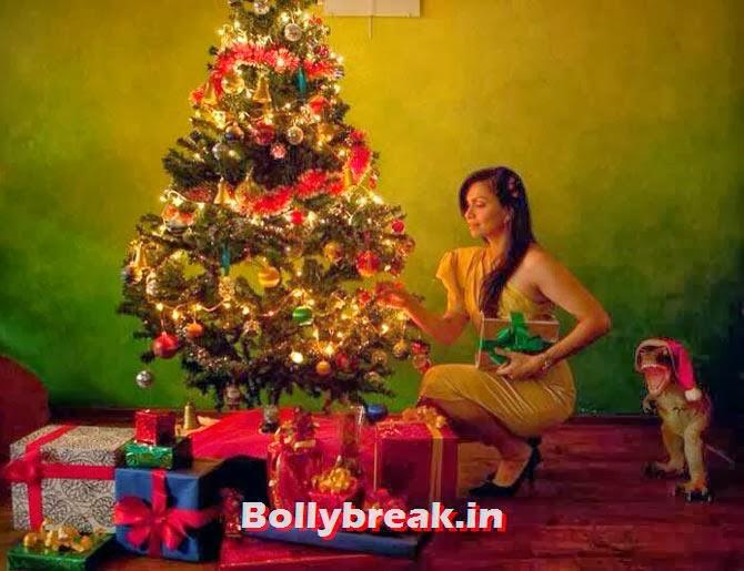 Maria Goretti, Bollywood celebs Christmas Pictures