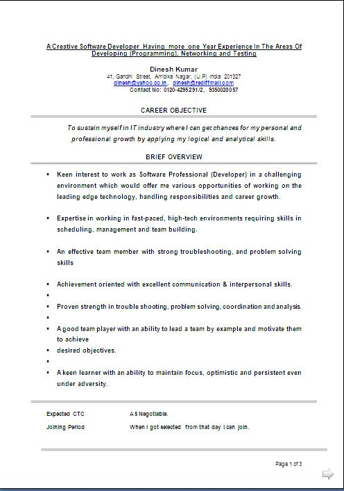 resume sample with work experience