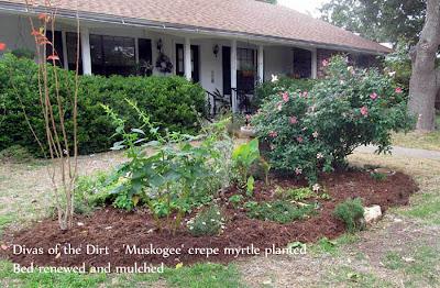 Divasofthedirt,muskogee planted