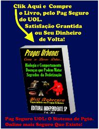Compre p/ Pag Seguro UOL – O sistema de Pgto. Online + Seguro do Mundo