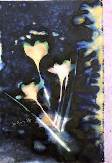 Wet Cyanotype_Sue Reno_Image 301